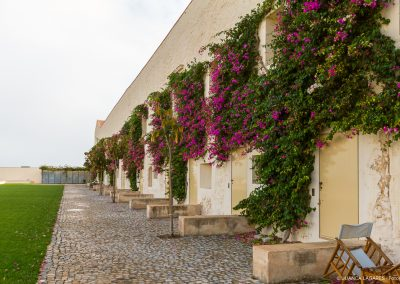Rehabilitación del Convento das Bernardas