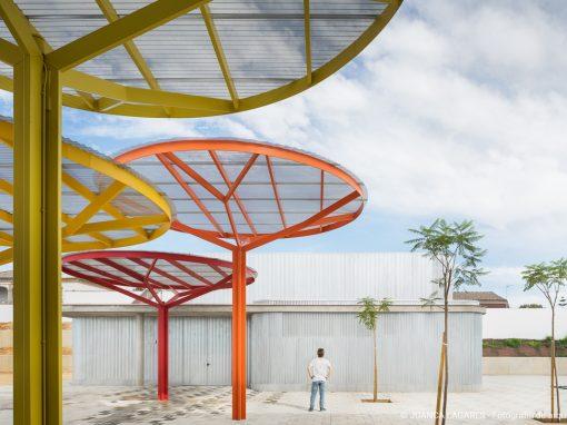 Colegio de educación infantil y primaria «Los Eucaliptos» en Olivares